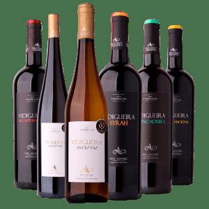 Seis Garrafas. Da esquerda para a direita: Vidigueira Alicante Bouschet, uma garrafa magnum de Vidigueira Antão Vaz, Vidigueira Antão Vaz, Vidigueira Syrah, Vidigueira Trincadeira e Vidigueira Touriga Nacional
