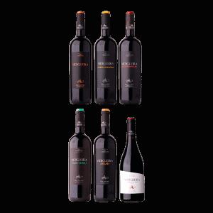 Pack Vinho Tinto Vidigueira